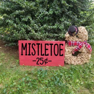 x8 mistletoe